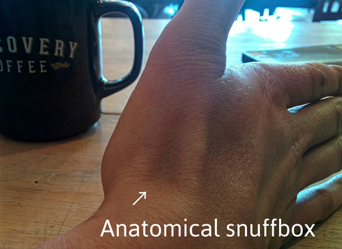 Libby demonstrates on her hand where the anatomical snuffbox is