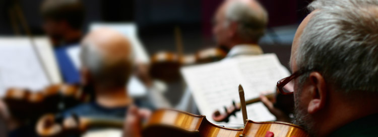 A concert violinist focuses during a symphony performance