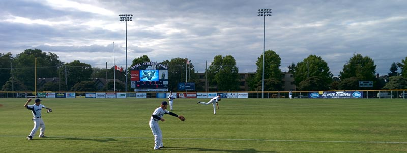 Baseball players warm up at Royal Athletic Park