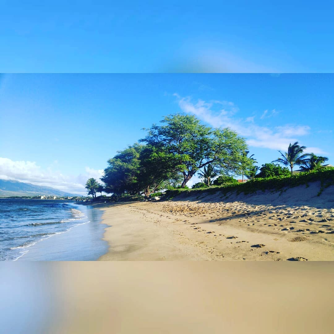 This is a photo with a blurred top and bottom edge, and which shows a sandy beach with the water lapping along the sand on the left. A green bank is on the right above the beach with green trees in the distance. It is a sunny, clear day.