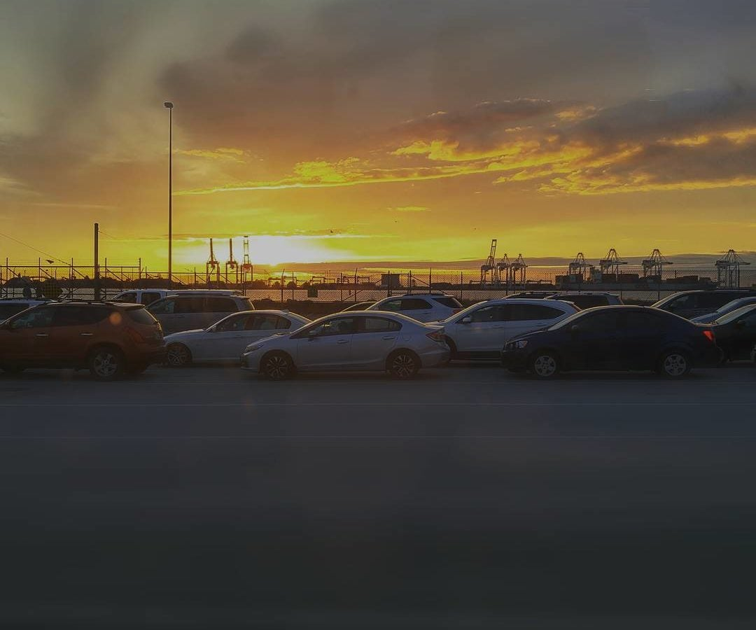 A golden sunset over the cars in line for BC Ferries.