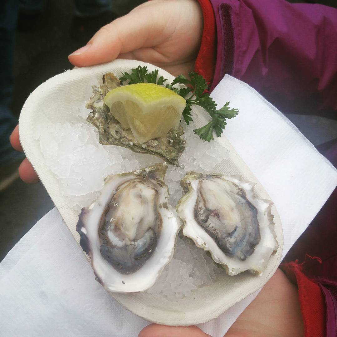 2 oysters with a lemon wedge, all on ice in a cardboard to-go container.