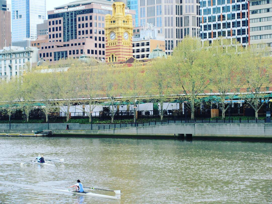 A view across a wide river with a couple of rowers on it. On the other bank are green leafy trees, and behind those is a brown building with very reflective dark windows.