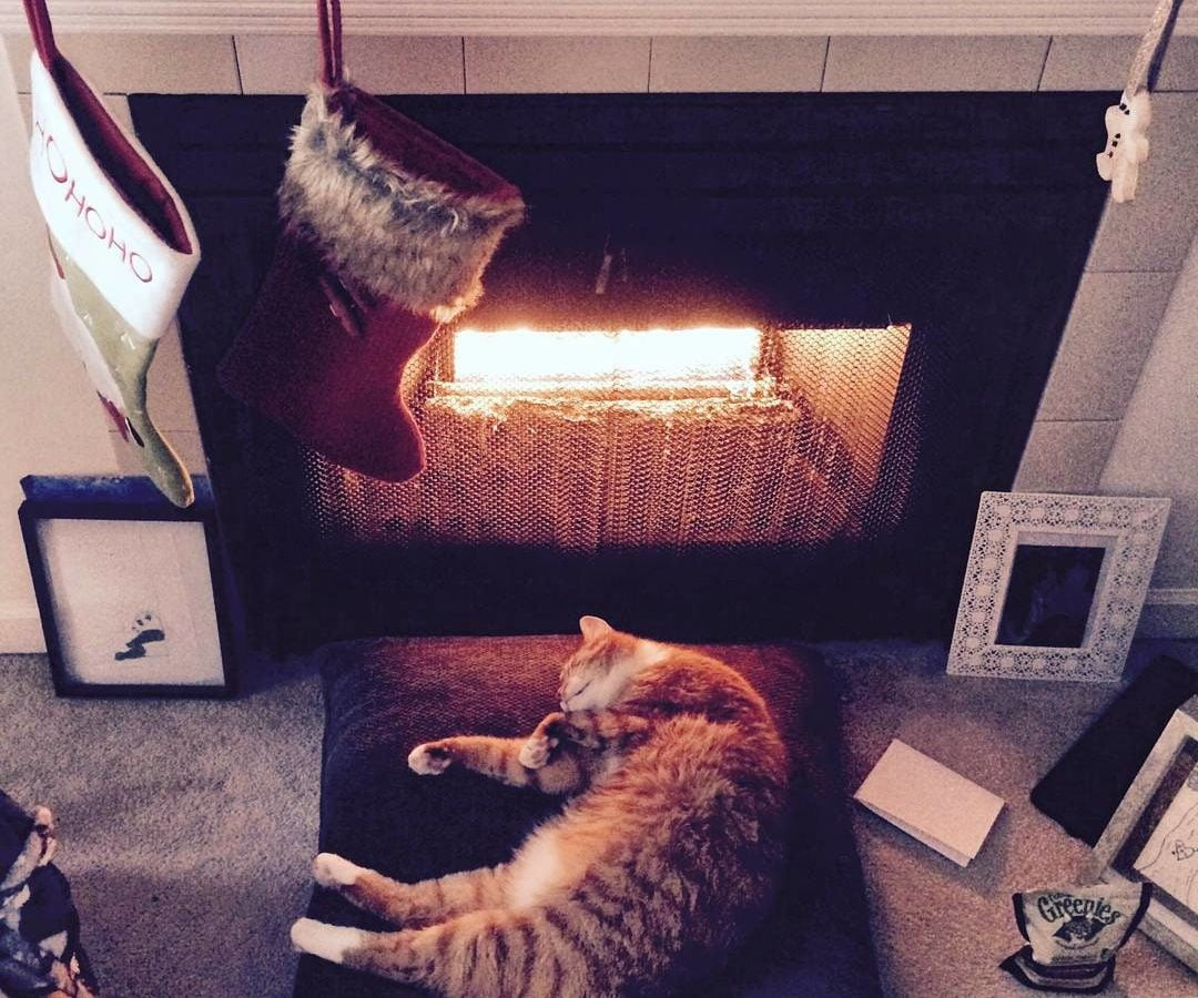 A ginger tabby cat is stretched out on a brown cushion in front of a fireplace, which is hung with two stockings and has Christmas cards on the mantel.