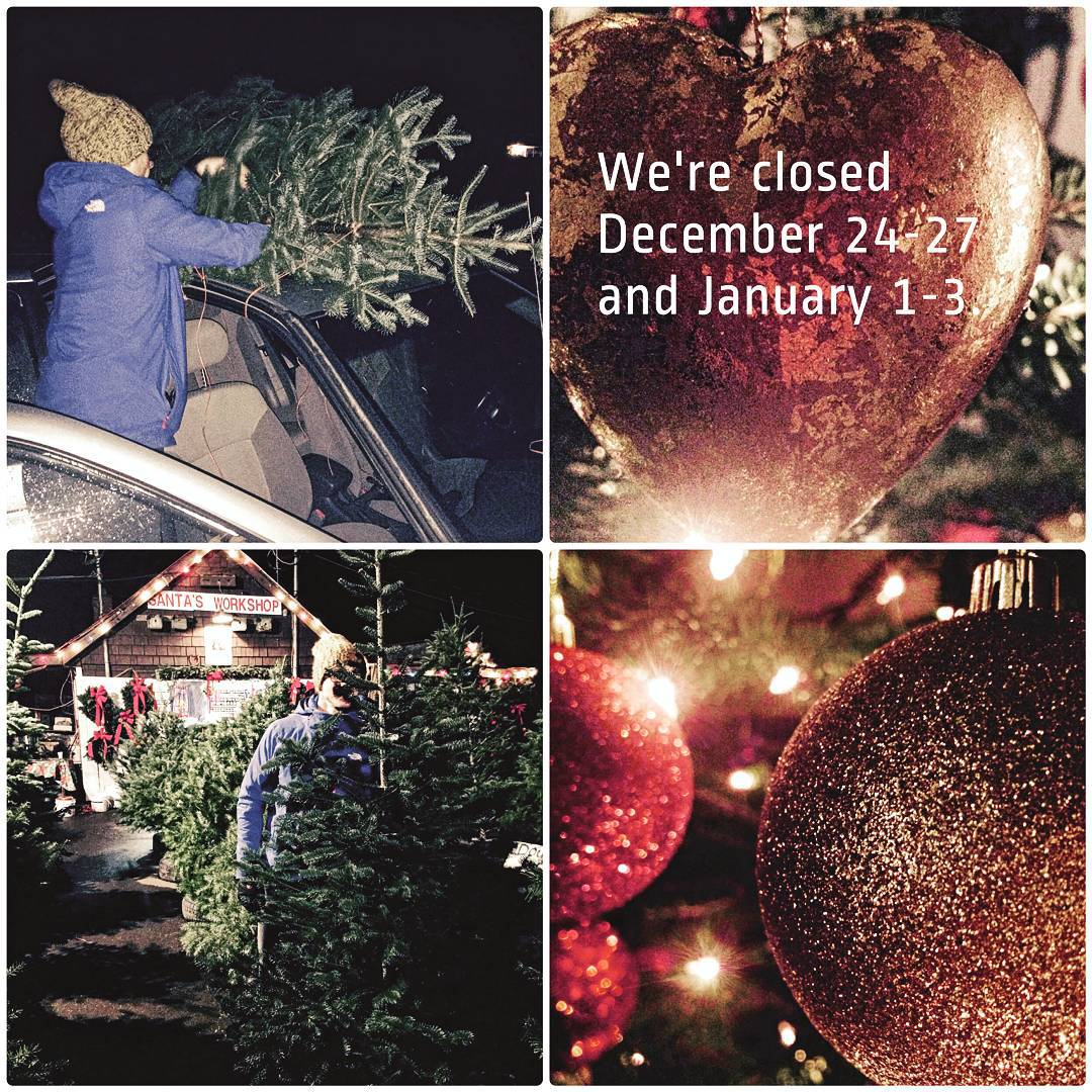 This graphic is divided into quarters to accommodate four photos. In the top left a woman in a blue winter coat is tying a Christmas tree to the top of her car. In the tope right is a red shiny heart shaped ornament with the dates they are closed edited on top in white letters. In the bottom right is a photo of red and gold glitter Christmas balls hanging together with twinkle lights around them. The bottom left is a Christmas tree farm with rows of trees, a man walking between the row central to the photo, and a lit up house in the background.