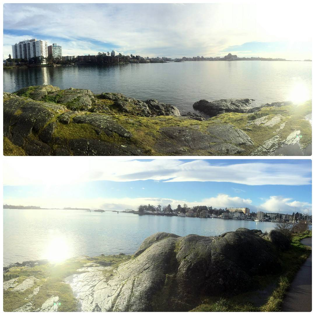 Two photos one on top of the other of slightly different views looking from a mossy covered rock out crop across the harbour and towards downtown. In the top photo the tall buildings of downtown are clearer. In the bottom there is a rock standing in the forefront and less of downtown. In both the sky is blue with white clouds and the sun is gleaming off the water.