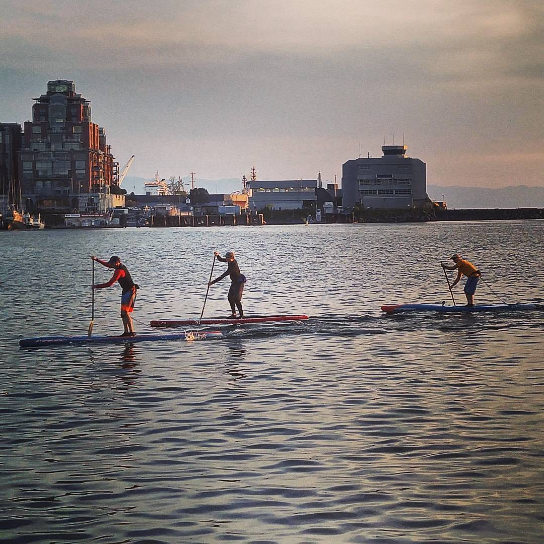 Three paddleboarders are paddling on the ocean in a row across the center of the photo. The water is quite calm with small rippling waves on the surface. The background is a cityscape with tall multistorey buildings. The sky is grey and cloudy with a touch of pink on the right.