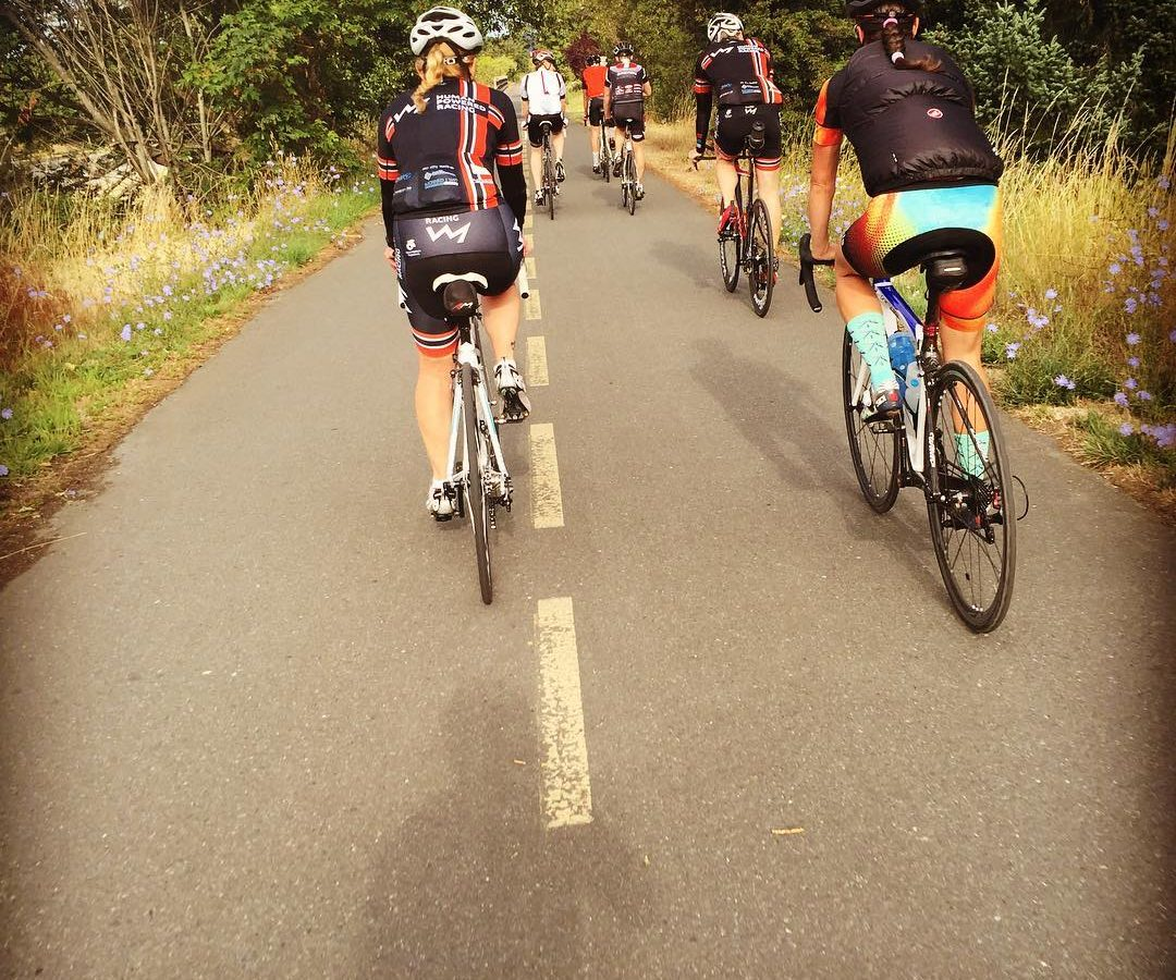 A group of bikers biking down a road away from the camera so that we are looking at their backs. There is tall green and brown grass on either side of the road as well as green trees. The glimpse of sky in the distance looks grey.
