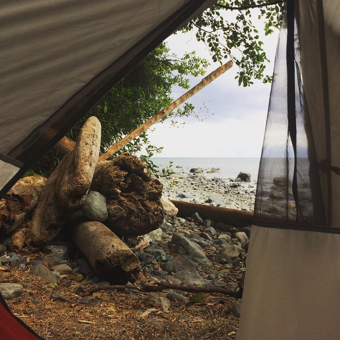 Bear Beach: Room with a View