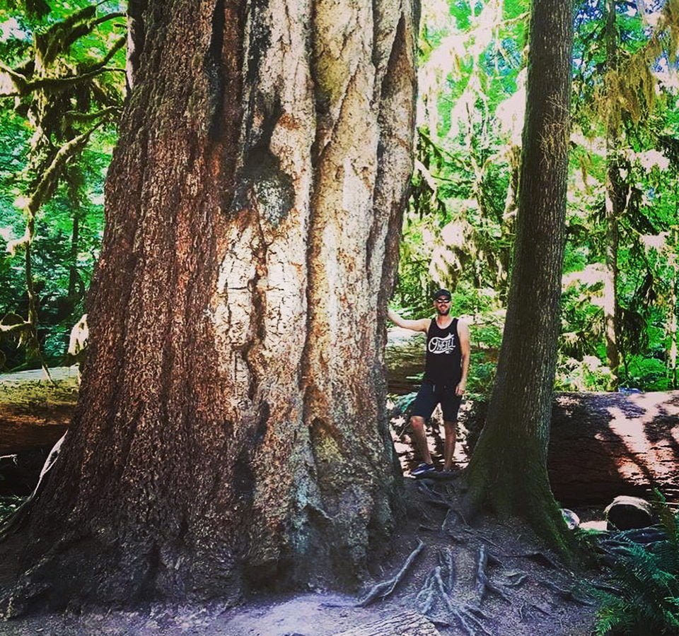 A man in a black tank and shorts standing beside a large evergreen tree trunk. It is too tall to see the branches of the tree in the photo. There are other tall mossy evergreens all around him.