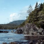 Forest and ocean on Vancouver Island.