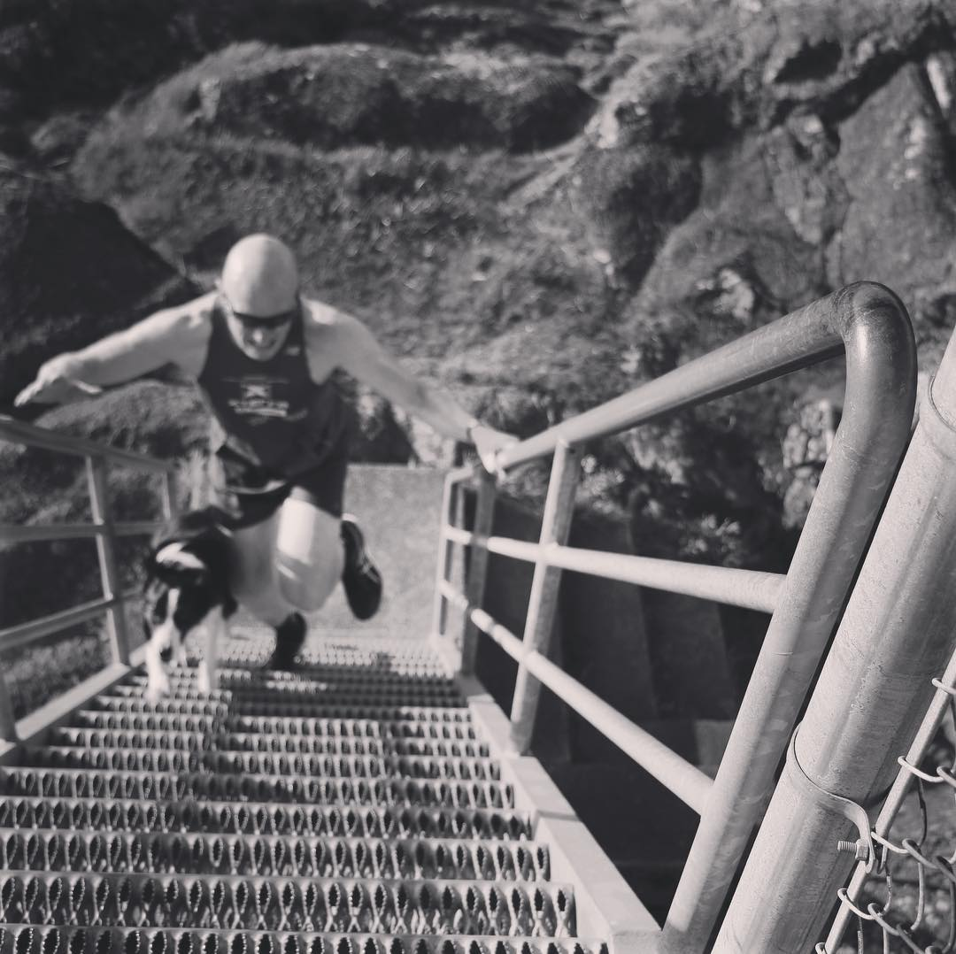 Rob runs up steep metal stairs in a wetsuit and swim cap with a black and white boarder collie beside him. The photo is in black and white.