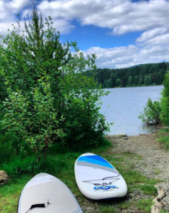 Two paddle boards like on the grass to the left with some green bushes and trees between them and the ocean which lies in the background. It is a sunny, clear day.