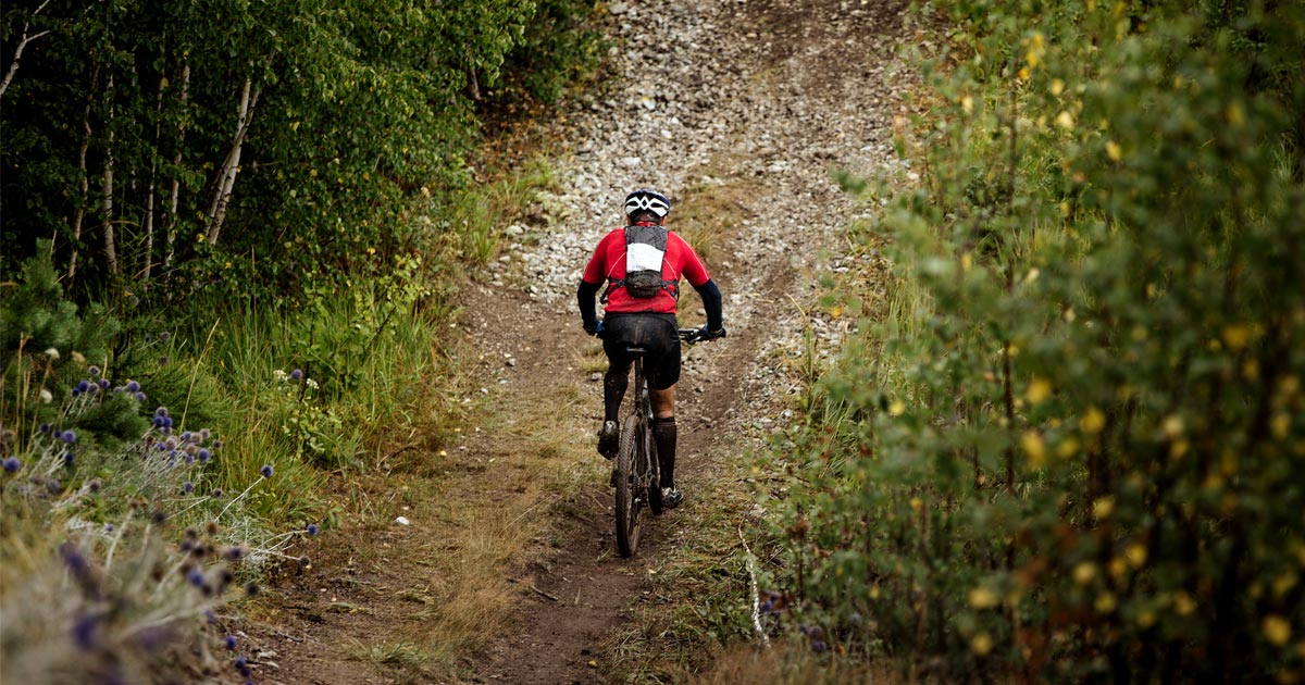 Mountain biker on Vancouver Island prepares for an uphill.