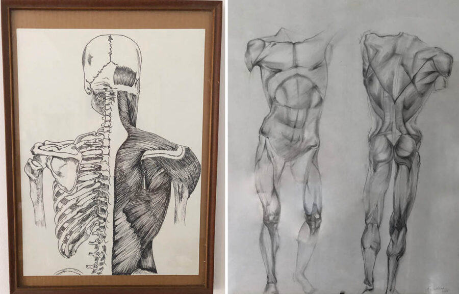 2 anatomical drawings by Lena