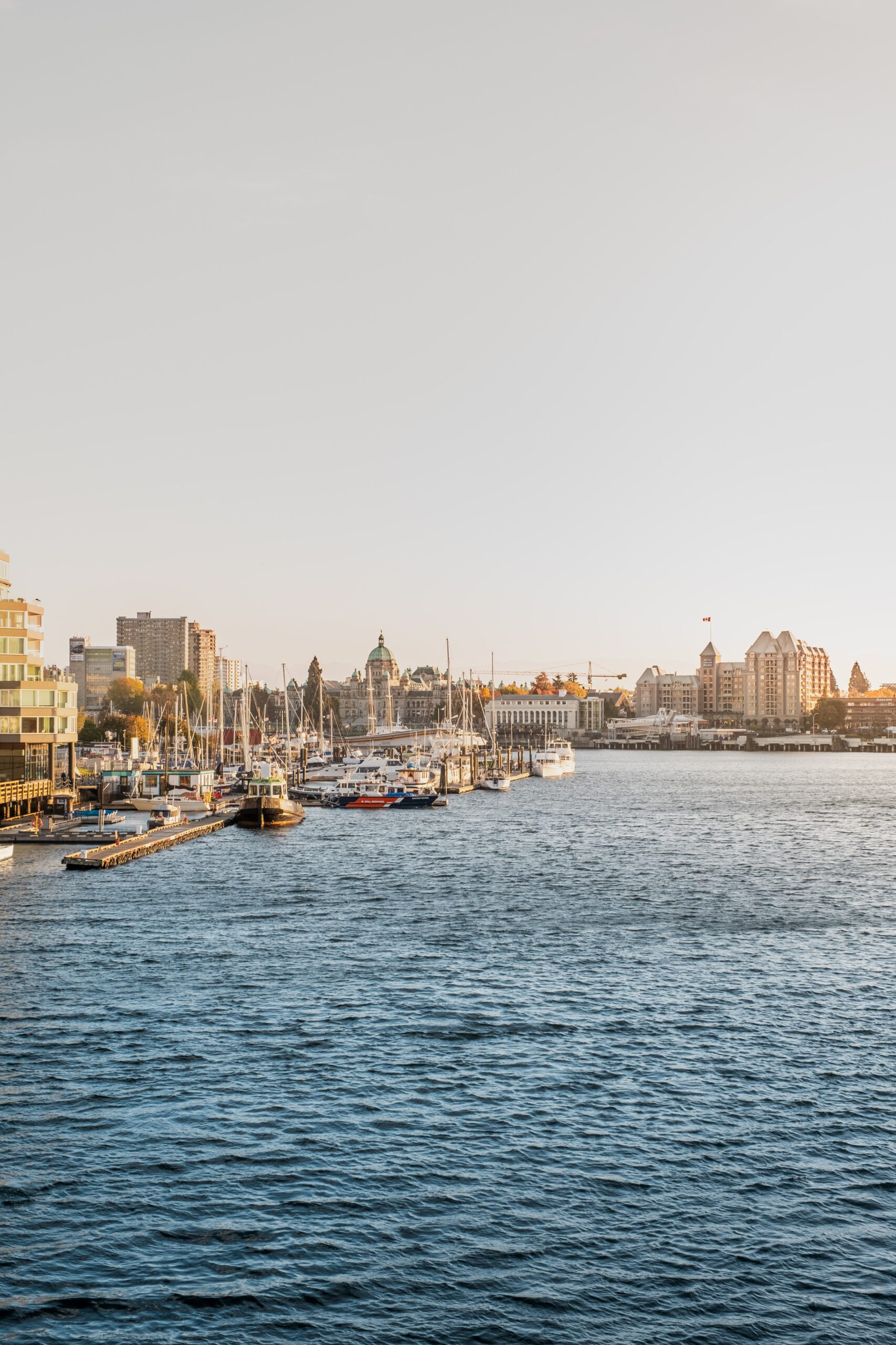 inner harbour review profile photo