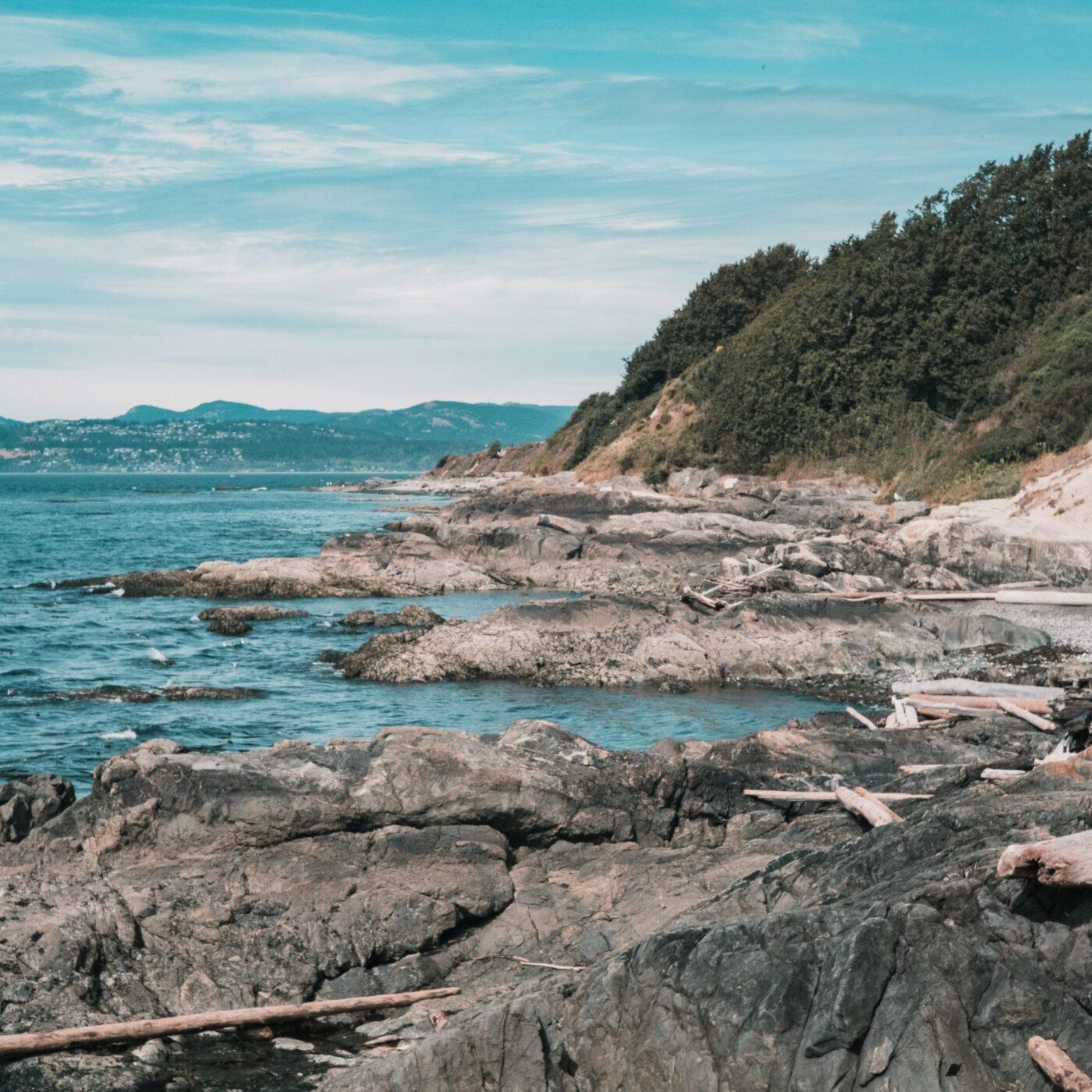 dallas beach review profile photo
